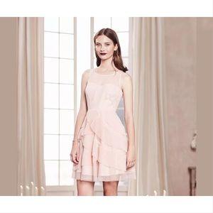 Lauren Conrad runway cameo rose tiered lace dress